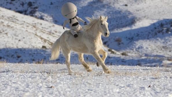 Na bílém koni