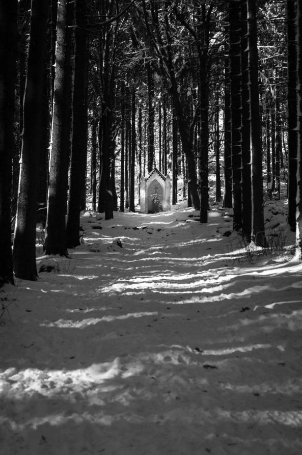 Zimní cestou křížovou...
